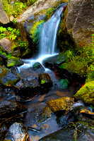 Ophir Creek & Hidden Waterfall - 2012