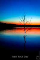 Table Rock Lake red sunset with blue sky and tree silhouette with reflection