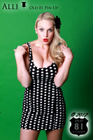 Alli Pin up Limited Edition Old 81 Pin-Up by Old 81 Studios