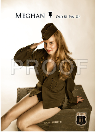 OLD81PINUPS_wallet_1101_V